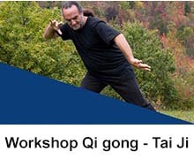 M° Bendinelli Workshop di Tai ji quan a Milano - 2020